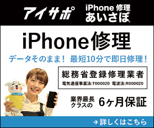 Iphone support 300 250